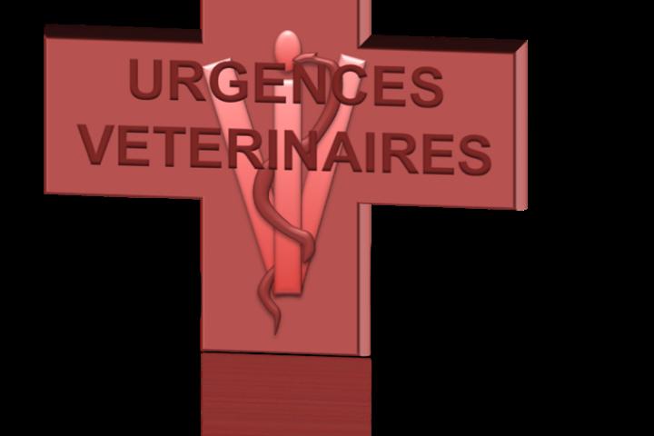 caducee vétérinaire