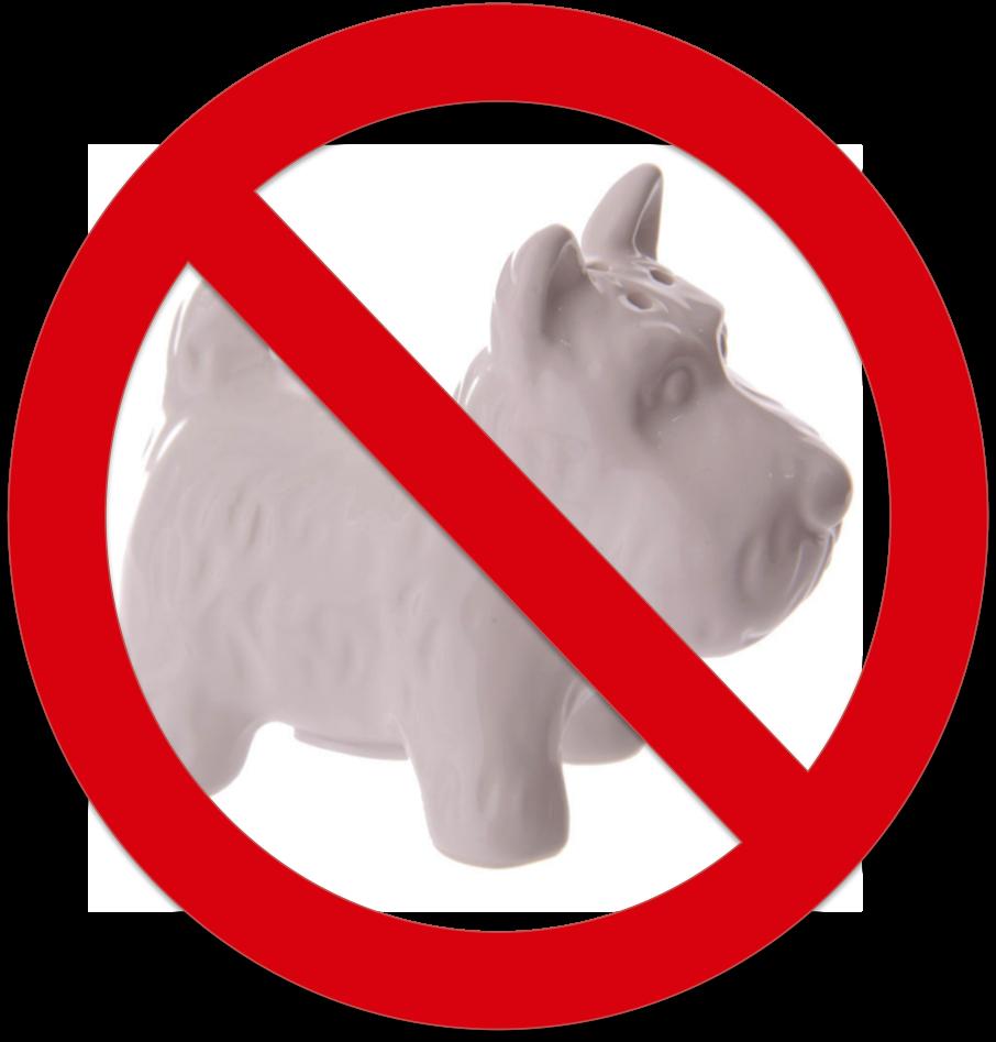 Le sel est à proscrire chez le chien cardiaque.